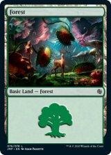 森/Forest No.76 【英語版】 [JMP-土地C]