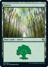 森/Forest No.77 【英語版】 [JMP-土地C]