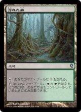汚れた森/Tainted Wood 【日本語版】 [JvV-土地U]