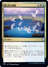 渡り鳥の経路/Migratory Route 【日本語版】 [KHC-金U]