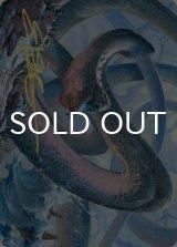 [アート・カード] 星界の大蛇、コーマ/Koma, Cosmos Serpent No.060 (箔押し版) 【英語版】 [KHM-トークン]