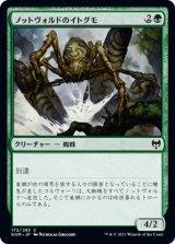 ノットヴォルドのイトグモ/Gnottvold Recluse 【日本語版】 [KHM-緑C]