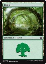 森/Forest No.262 【英語版】 [KLD-土地]《状態:NM》