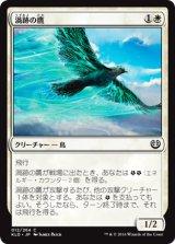 渦跡の鷹/Eddytrail Hawk 【日本語版】 [KLD-白C]《状態:NM》