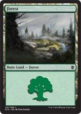 森/Forest No.267 【英語版】 [KTK-土地]《状態:NM》