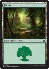 森/Forest No.269 【英語版】 [KTK-土地]《状態:NM》