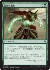龍鱗の加護/Dragonscale Boon 【日本語版】 [KTK-緑C]