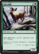 高地の獲物/Highland Game 【日本語版】 [KTK-緑C]