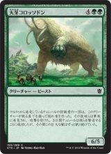 大牙コロッソドン/Tusked Colossodon 【日本語版】 [KTK-緑C]