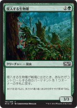 侵入する生物種/Invasive Species 【日本語版】 [M15-緑C]