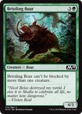 逆毛の猪/Bristling Boar 【英語版】 [M19-緑C]