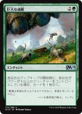 巨大な威厳/Colossal Majesty 【日本語版】 [M19-緑U]