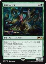 飢餓ハイドラ/Hungering Hydra 【日本語版】 [M19-緑R]