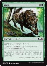 樫変化/Oakenform 【日本語版】 [M19-緑C]