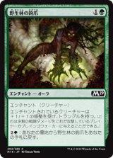 野生林の鉤爪/Talons of Wildwood 【日本語版】 [M19-緑C]