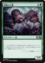 茨隠れの狼/Thornhide Wolves 【日本語版】 [M19-緑C]