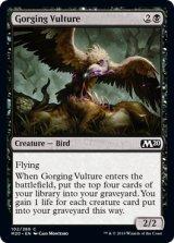 貪る禿鷹/Gorging Vulture 【英語版】 [M20-黒C]
