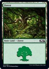 森/Forest No.277 【英語版】 [M20-土地C]