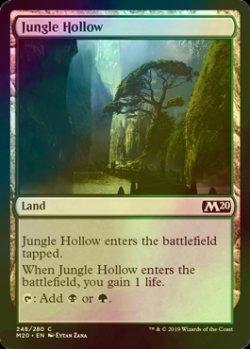 画像1: [FOIL] ジャングルのうろ穴/Jungle Hollow 【英語版】 [M20-土地C]