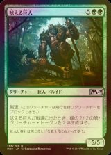 [FOIL] 吠える巨人/Howling Giant 【日本語版】 [M20-緑U]
