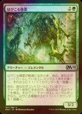 [FOIL] はびこる精霊/Overgrowth Elemental 【日本語版】 [M20-緑U]