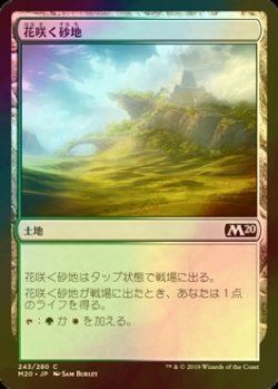 画像1: [FOIL] 花咲く砂地/Blossoming Sands 【日本語版】 [M20-土地C]