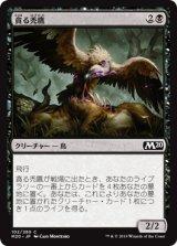 貪る禿鷹/Gorging Vulture 【日本語版】 [M20-黒C]