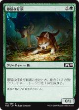 獰猛な仔狼/Ferocious Pup 【日本語版】 [M20-緑C]
