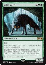 夜群れの伏兵/Nightpack Ambusher 【日本語版】 [M20-緑R]