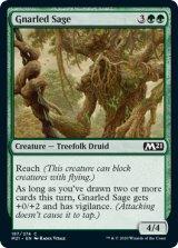 節くれの賢者/Gnarled Sage 【英語版】 [M21-緑C]
