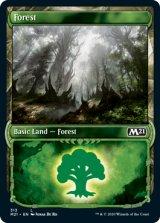 森/Forest (ショーケース版) No.313 【英語版】 [M21-土地C]《状態:NM》