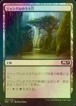 画像1: [FOIL] ジャングルのうろ穴/Jungle Hollow 【日本語版】 [M21-土地C]