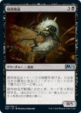 屍肉地虫/Carrion Grub 【日本語版】 [M21-黒U]《状態:NM》