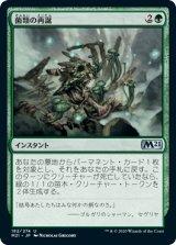 菌類の再誕/Fungal Rebirth 【日本語版】 [M21-緑U]《状態:NM》