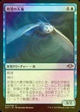 [FOIL] 吹雪の大梟/Blizzard Strix 【日本語版】 [MH1-青U]