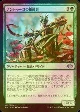 [FOIL] ナントゥーコの養成者/Nantuko Cultivator 【日本語版】  [MH1-緑U]