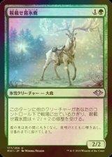 [FOIL] 鞍載せ霧氷鹿/Saddled Rimestag 【日本語版】 [MH1-緑U]
