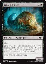 暴食するナメクジ/Gluttonous Slug 【日本語版】 [MH1-黒C]《状態:NM》