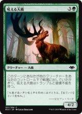 吼える大鹿/Bellowing Elk 【日本語版】 [MH1-緑C]《状態:NM》