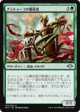 ナントゥーコの養成者/Nantuko Cultivator 【日本語版】  [MH1-緑U]
