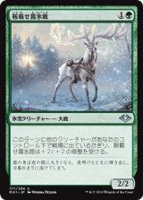 鞍載せ霧氷鹿/Saddled Rimestag 【日本語版】 [MH1-緑U]