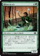 春花のドルイド/Springbloom Druid 【日本語版】 [MH1-緑C]《状態:NM》