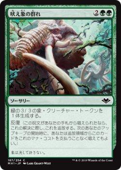 画像1: 吠え象の群れ/Trumpeting Herd 【日本語版】 [MH1-緑C]