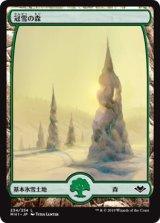 冠雪の森/Snow-Covered Forest 【日本語版】 [MH1-土地C]