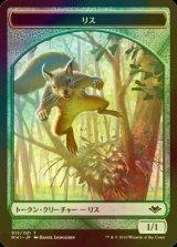 [FOIL] リス/Squirrel 【日本語版】 [MH1-トークン]