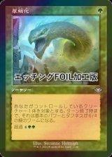 [FOIL] 厚鱗化/Scale Up (旧枠, エッチング仕様) 【日本語版】 [MH2-緑U]