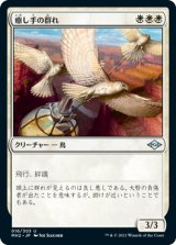 癒し手の群れ/Healer's Flock 【日本語版】 [MH2-白U]