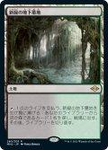 新緑の地下墓地/Verdant Catacombs 【日本語版】 [MH2-土地R]