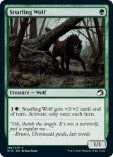 うなる狼/Snarling Wolf 【英語版】 [MID-緑C]