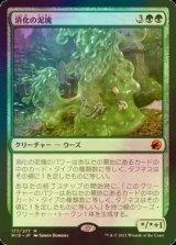 [FOIL] 消化の泥塊/Consuming Blob (コレクターブースター版) 【日本語版】 [MID-緑MR]
